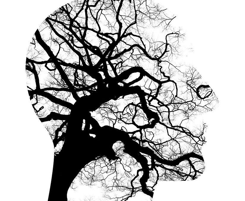 Psychology Studies: Why should you choose Psychology!
