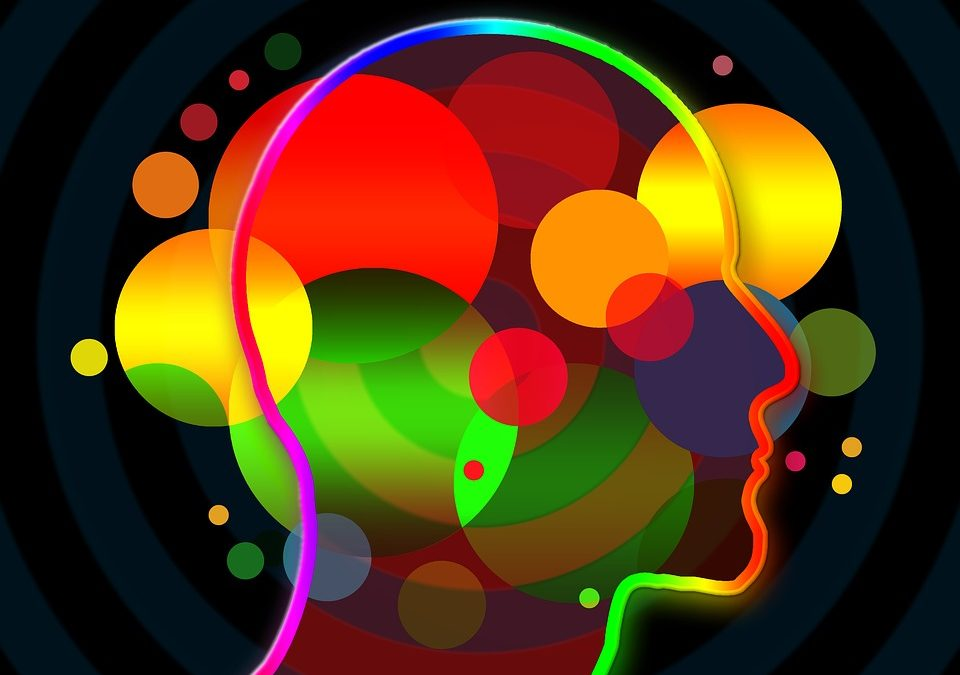 What can I do with a Psychology degree? Get all the informations about Psychology Uni Courses